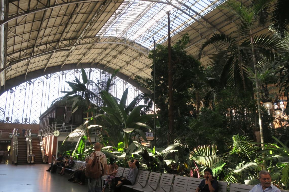 馬德里Atocha火車站的熱帶花園